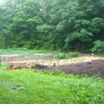 wet garden june 2009